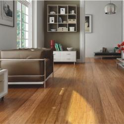 View Photo: Carbonised Bamboo Flooring