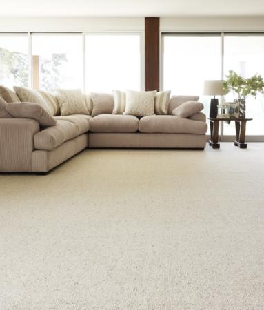 View Photo: Naturally Smart Naturally Tempting Carpet
