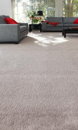 View Photo: Smartstrand IQ150 Design 2 Carpet