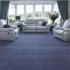 Smartstrand Silk Classic Carpet Flooring