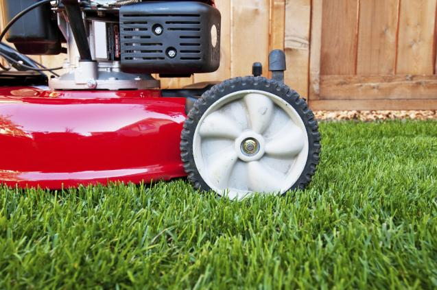 Read Article: Hi Quality Turf blog