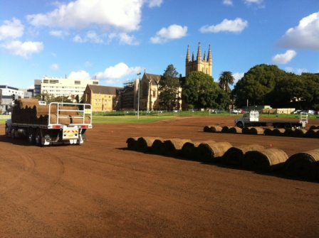 View Photo: Commercial Turf Laying