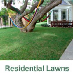 View Photo: Residential Lawns