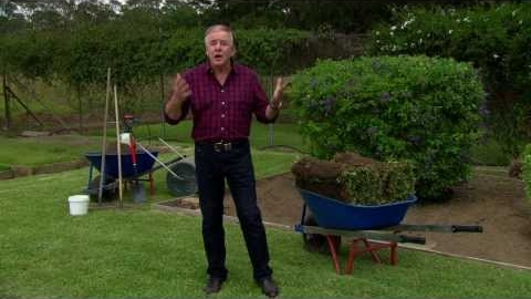 Watch Video: Graham Ross gives tips on how to lay Kings Pride