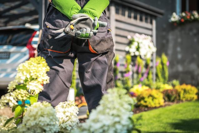 4 Ways To Secure Your Backyard