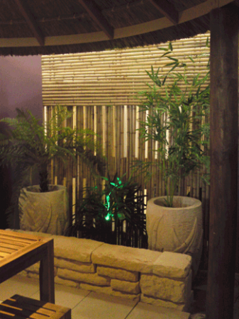 View Photo: Create a Perfect Backdrop with Bamboo