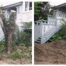 View Photo: Stump Grinding Beside Exterior Stairs