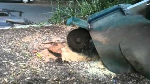 Watch Video: Stump Grinding Brisbane - Portable Equipment