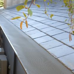 View Photo: Leafbusters on a slate roof