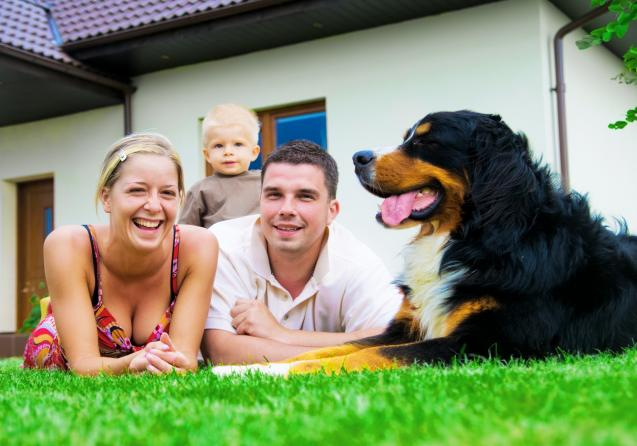 Read Article: An Introduction to Lifestyle Lawns Australia