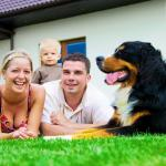 An Introduction to Lifestyle Lawns Australia