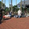 Taronga Zoo Sydney Australia .Old Red Cobblestones