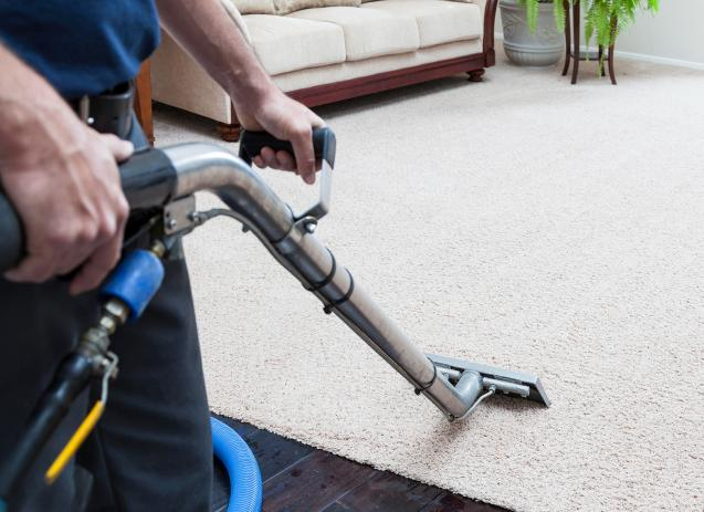 Read Article: How To Disinfect A Carpet