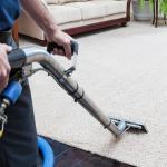 How To Disinfect A Carpet