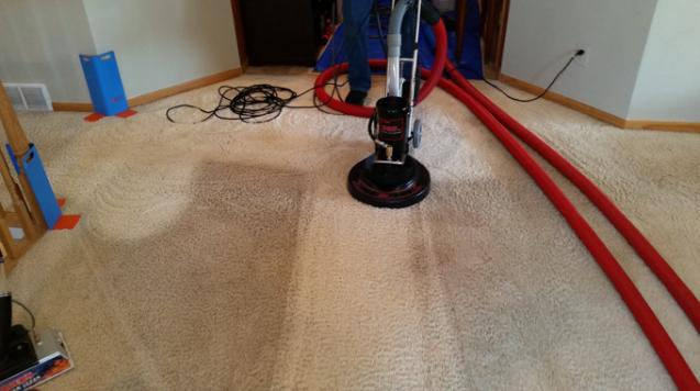 How You Can Remove Moulds from Your Carpet Effectively?