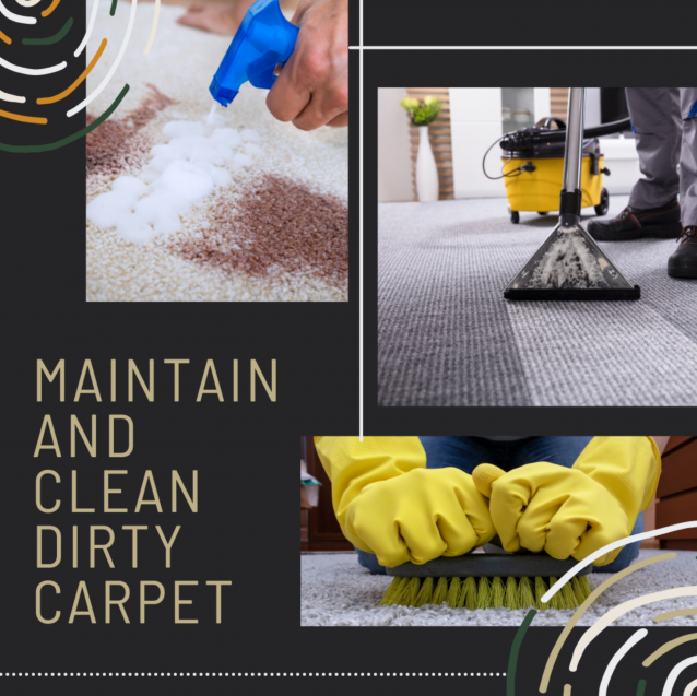 Read Article: Three Ways You Can Maintain And Clean Dirty Carpets