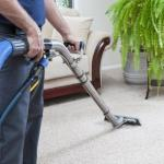 What Are Some Of The Worst Stains For Your Carpet?