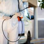 Read Article: Facts You Need Know About Pest Control