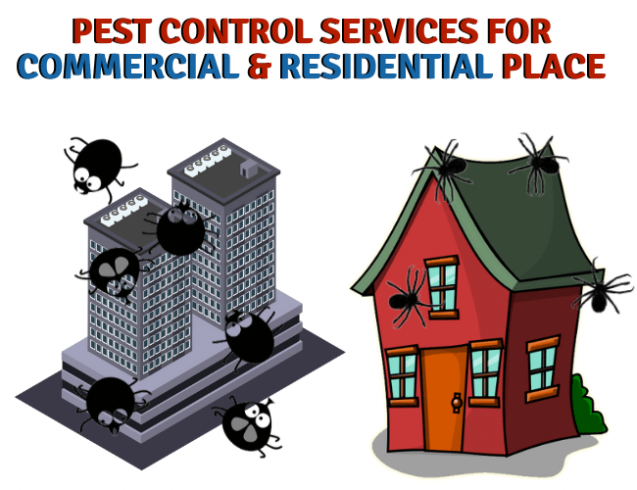 Read Article: How to Control Pests Like Professionals?
