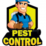 What Makes The Cockroach Infestation Dangerous?