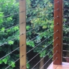 Timber, steel and wire balustrade