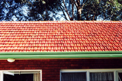 Orange Terracotta Terracotta Tile Roof Restoration Photo