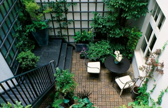 Read Article: Tips and Ideas for Transforming your Courtyard