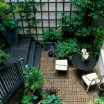 Tips and Ideas for Transforming your Courtyard