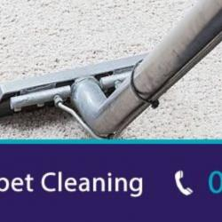 View Photo: Residential Carpet Cleaning
