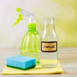 View Photo: Vinegar