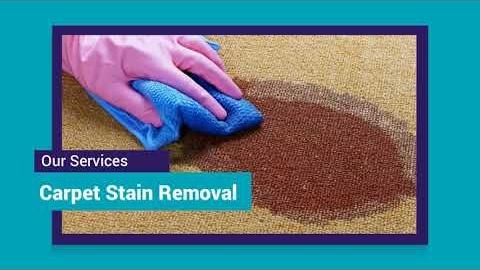 Watch Video: Carpet Cleaning Melbourne CBD | 03 8595 9900 | NO1 Carpet Cleaning Melbourne