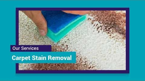 Watch Video: Carpet Cleaning Melbourne Eastern Suburbs | 03 8595 9900 | NO1 Carpet Cleaning Melbourne