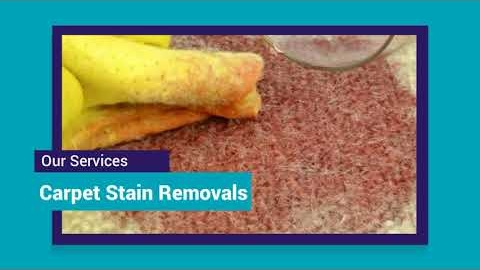 Watch Video: Carpet Cleaning Melbourne Northern Suburbs | 03 8595 9900 | NO1 Carpet Cleaning Melbourne