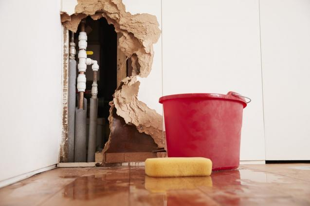 Read Article: 5 Tips To Prevent Water Damage In Your Home
