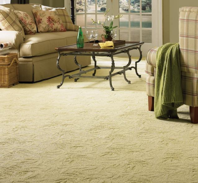 Read Article: Reasons To Consider A Wool Carpet For Your Home