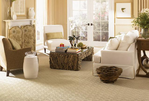 Read Article: Top 5 Reasons Why Wall-to-wall Carpeting Is A Good Idea