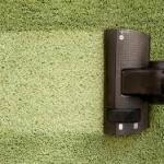 Top 6 Benefits of Having Your Carpet Cleaned Professionally