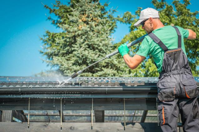 Read Article: What Every Homeowner Needs To Know About Residential Roof Cleaning