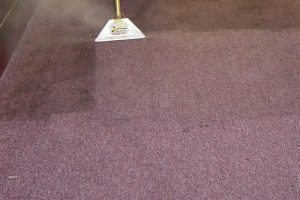 View Photo: Carpet steam cleaning services