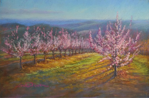 View Photo: Springtime in the Orchard