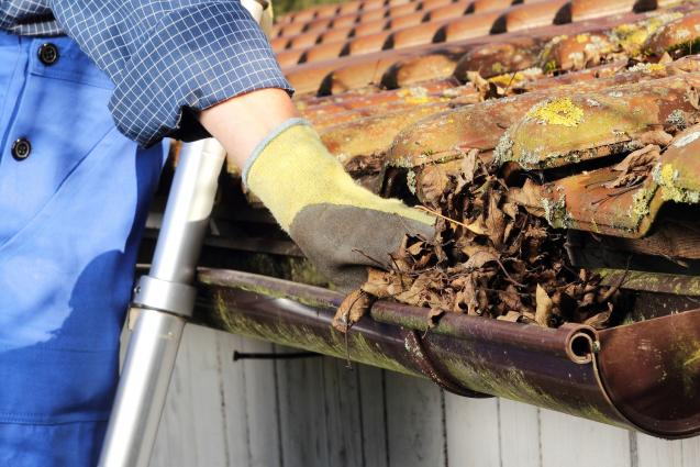 Read Article: Top Tips On Selecting A Gutter Cleaning Company