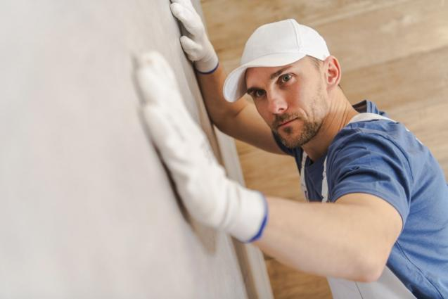 Read Article: Why Annual Termite Inspections Are Important
