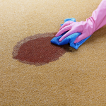Read Article: 15 Unexpected Ways Carpet Cleaning Can Make Your Life Better