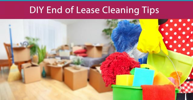 Read Article: DIY End of Lease Cleaning Tips
