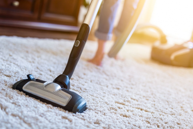 Move Out Carpet Cleaning Guide