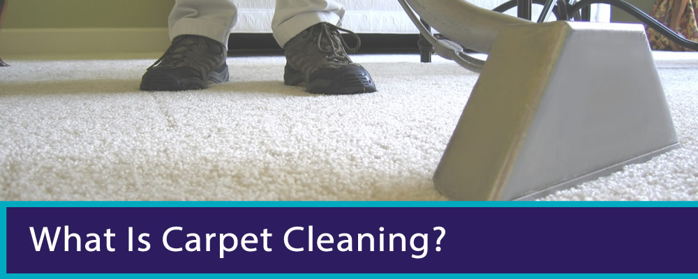 View Photo: What is carpet cleaning