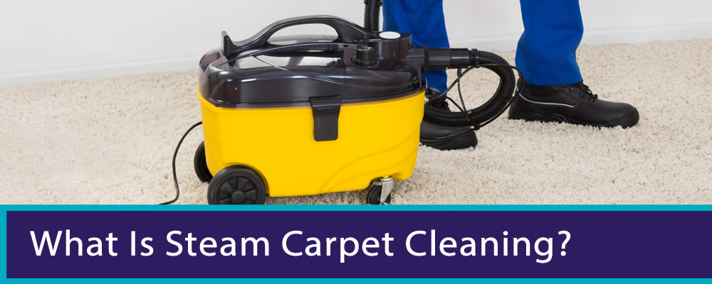 View Photo: What is steam carpet cleaning