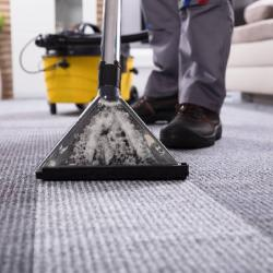 View Photo: Dry Carpet Cleaning