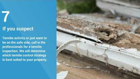 Watch Video: Termite Control Gold Coast | 07 5515 0220 | Pro Pest Control Gold Coast