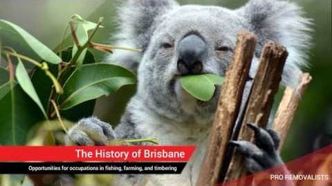 Watch Video: Best Tips For Moving to Brisbane